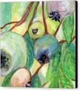 Blueberries Canvas Print