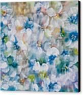 Bluebonnet Canvas Print by Don  Wright