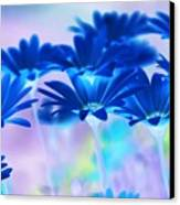 Bluemination Canvas Print