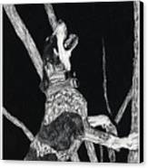 Bluetick Coonhound Canvas Print