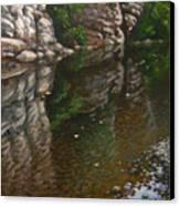 Bluff Reflections Buffalo River Canvas Print by Timothy Jones