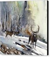 Boone And Crockett Canvas Print