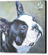 boston Terrier butterfly Canvas Print by Lee Ann Shepard