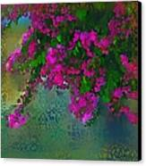 Bougainville Delight Canvas Print by Seema Sayyidah