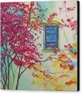 Bouganvilla And Blue Shutter Canvas Print