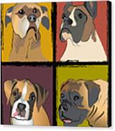 Boxer Dog Portraits Canvas Print by Robyn Saunders