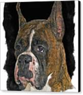 Boxer Canvas Print by Larry Linton