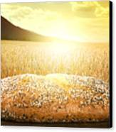 Bread And Wheat Cereal Crops At Sunset Canvas Print