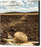 Bread And Wheat Ears. Plowed Land Canvas Print by Deyan Georgiev