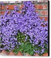 Brick Wall With Blue Flowers Canvas Print