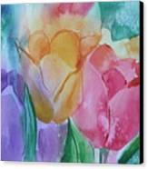 Bright And Pretty Canvas Print
