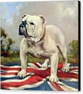 British Bulldog Canvas Print by English School