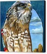 Brother Hawk Canvas Print