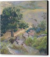 Buckhorn Canyon Canvas Print