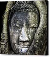 Buddha Head In Banyan Tree Canvas Print by Adrian Evans
