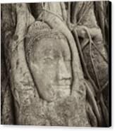 Buddha Head In Tree Canvas Print by Fototrav Print