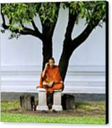 Buddhist Monk Sits Under Tree Canvas Print by Ray Laskowitz - Printscapes