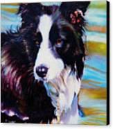 Buddy Border Collie Canvas Print