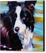 Buddy Border Collie Canvas Print by Kelly McNeil