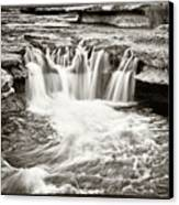 Bull Creek Water Run Canvas Print by Lisa  Spencer