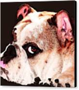 Bulldog Art - Let's Play Canvas Print by Sharon Cummings