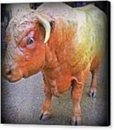 Bulls Eye Canvas Print by Randall Weidner