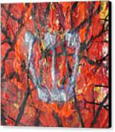 Burning Bush Canvas Print by Mordecai Colodner