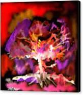 Burning Bush Canvas Print
