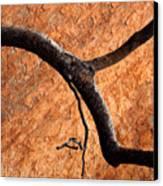 Burnt Orange Canvas Print by Mike  Dawson