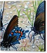 Butterflies Original Oil Painting Canvas Print by Natalja Picugina