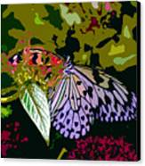 Butterfly In Garden Canvas Print