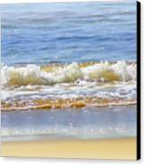 By The Coral Sea Canvas Print