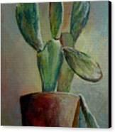 Cactus 1 Canvas Print