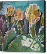 Cactus Blossoms In Desert Canvas Print