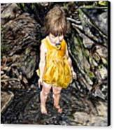 Caice At Otter Creek Canvas Print