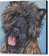 Cairn Terrier Brindle Canvas Print by Lee Ann Shepard