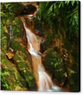 Caldeira Velha Park Canvas Print