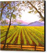 California Napa Valley Vineyard Canvas Print