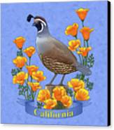 California Quail And Golden Poppies Canvas Print by Crista Forest