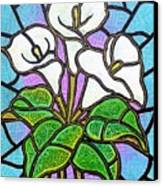 Calla Lilies 3 Canvas Print