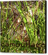 Camouflage Canvas Print by Methune Hively