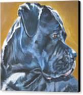 Cane Corso Canvas Print by Lee Ann Shepard