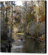 Canoeing In Florida Canvas Print