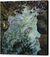 Canyon Study Canvas Print