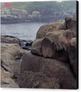 Cape Neddick Lighthouse York Maine Canvas Print by Thomas R Fletcher