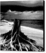 Captiva Storm Canvas Print