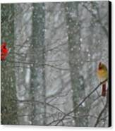 Cardinals In Snow Canvas Print