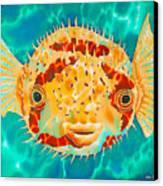 Caribbean Puffer Canvas Print