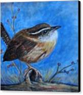Carolina Wren Canvas Print by Patricia L Davidson