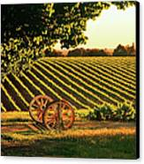 Cart Wheels At Barossa Valley Vineyard, South Australia Canvas Print by Peter Walton Photography
